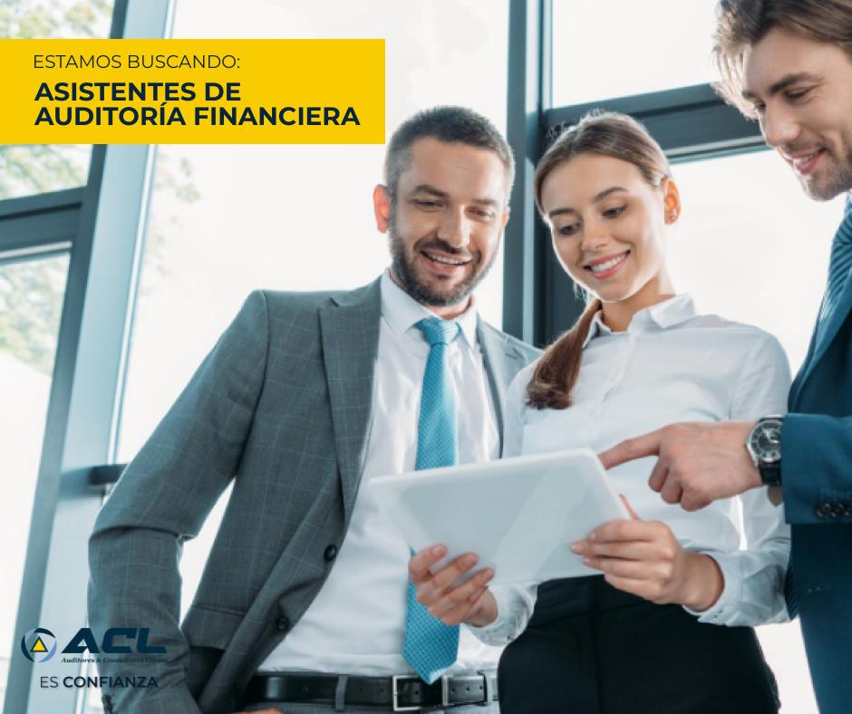 asistentes de auditoría financiera